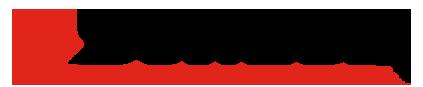 Dunlop Conveyor Belting Logo